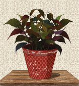 plant in flower pot on wooden table with geometric background.  Individual elements and textures. Hi-res JPG included. See my collections linked below:http://i161.photobucket.com/albums/t234/lolon5/gardens.jpg