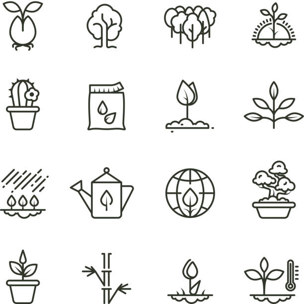 Plant, planting and seed line vector icons. Sprout growing symbols vector art illustration