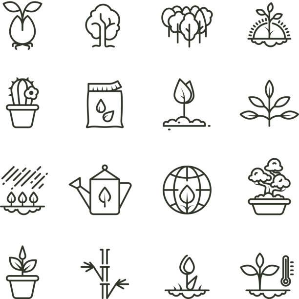 ilustrações de stock, clip art, desenhos animados e ícones de plant, planting and seed line vector icons. sprout growing symbols - plantar