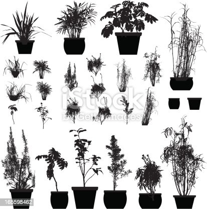 A collection of 25 detailed plant silhouettes. Each plant pot is a different pathway.