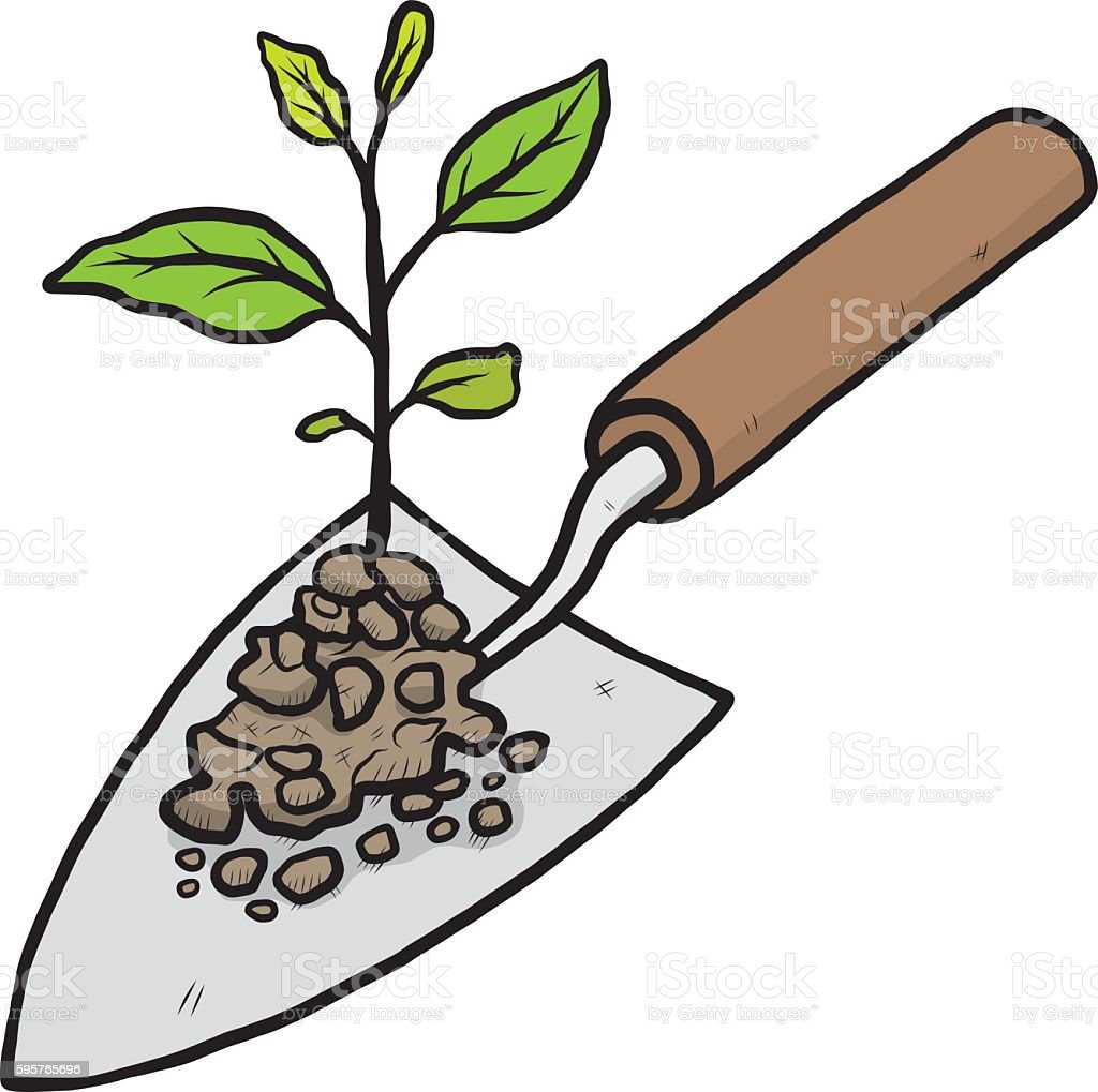 Illustrations Of A Trowel : Plant sprout and trowel stock vector art more images of