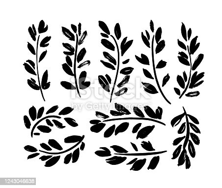 Plant twigs with leaves black paint illustrations set. Hand drawn foliage branch silhouettes isolated on white background. Monochrome botanical design elements with dry brush stroke effect