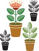 A potted plant in 4 versions. Each version is grouped, one is in flower, the other leaf only. Black and white and colour versions all included. All individual plants grouped.