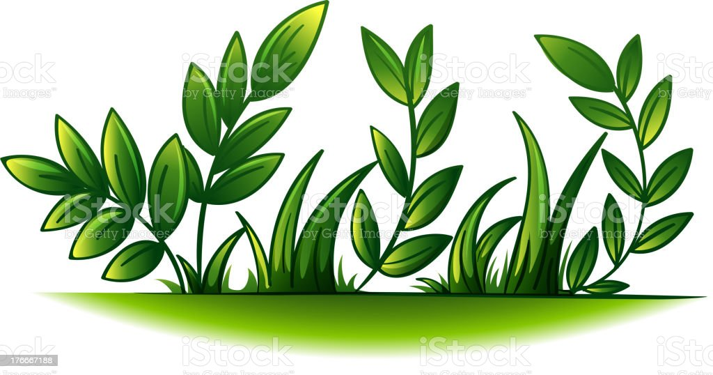 Plant royalty-free plant stock vector art & more images of clip art