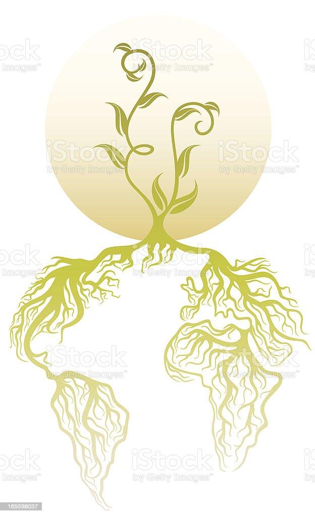 Planta con raíces ilustración de planta con raíces y más banco de imágenes de conceptos y temas libre de derechos