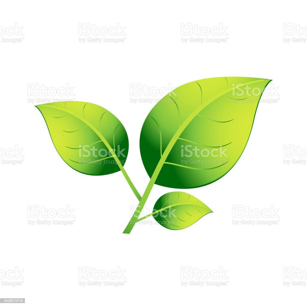 Una Planta Con Tres Hojas Verdes Sobre Un Fondo Blanco Eps 10 - Arte ...