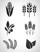 Plantation icon set.