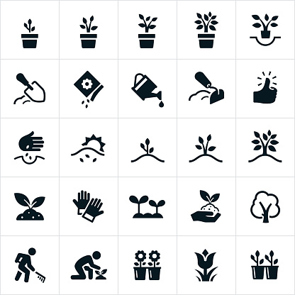 Planting and Growing Icons