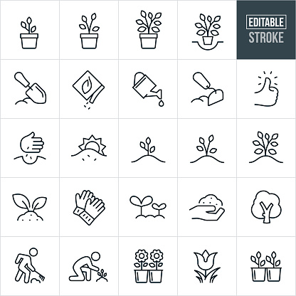 Planting and Growing Thin Line Icons - Editable Stroke