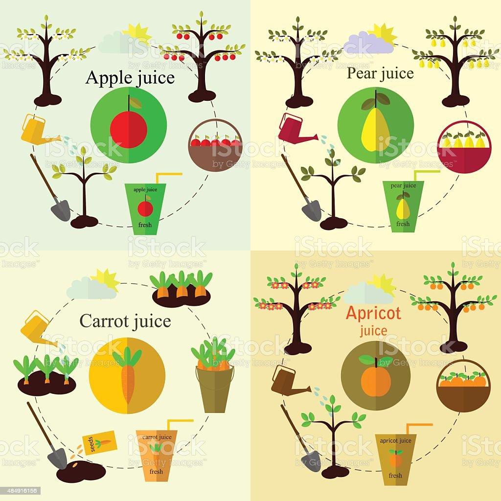 Pflanzen Prozess set und Saft flache Vektor, set – Vektorgrafik