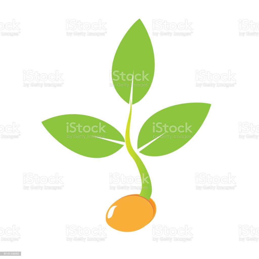 Pflanzen Samen Sprießen Im Boden Symbol Zu Bäumchen Wachsen Symbol ...