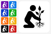 Planting Tree Icon Square Button Set. The icon is in black on a white square with rounded corners. The are eight alternative button options on the left in purple, blue, navy, green, orange, yellow, black and red colors. The icon is in white against these vibrant backgrounds. The illustration is flat and will work well both online and in print.