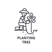 planting tree line icon, outline sign, linear symbol, vector, flat illustration