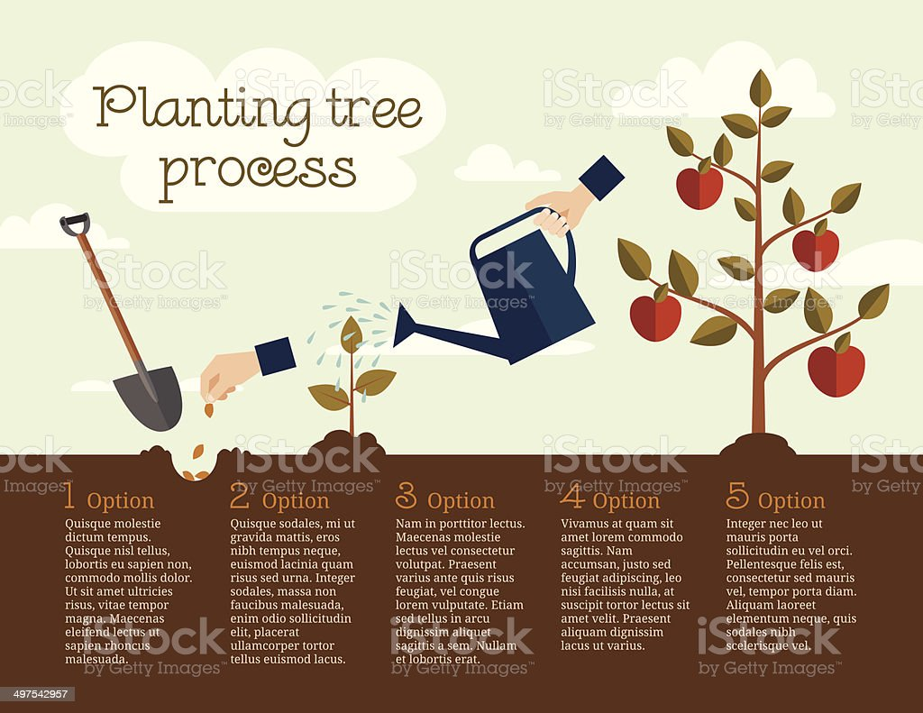 Planting tree process vector art illustration