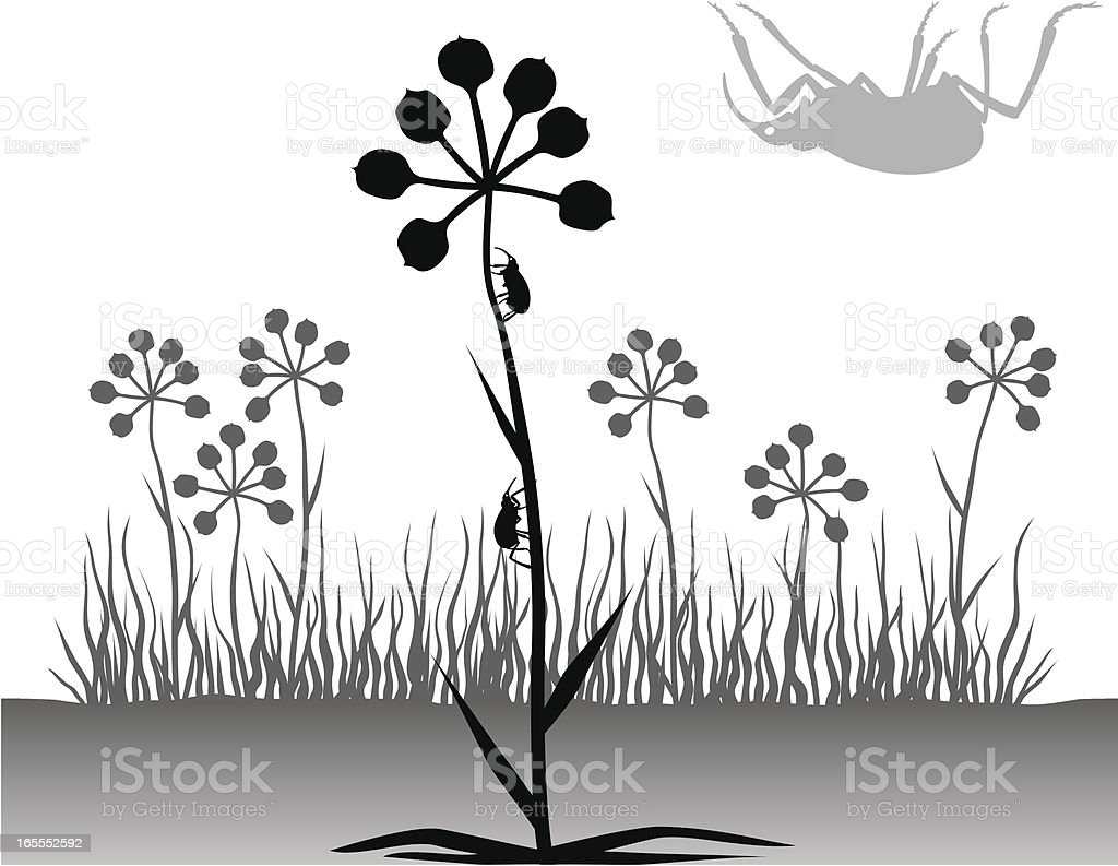Plants and Beetles Silhouette royalty-free stock vector art