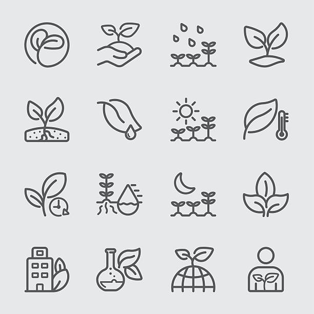 Plants and Growth line icon vector art illustration
