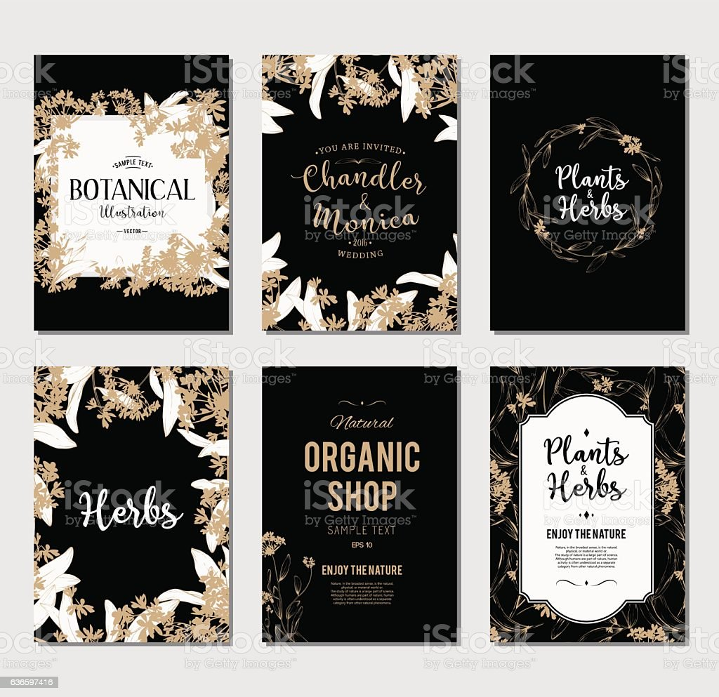 Plants And Herbs Banners Set Stock Illustration - Download
