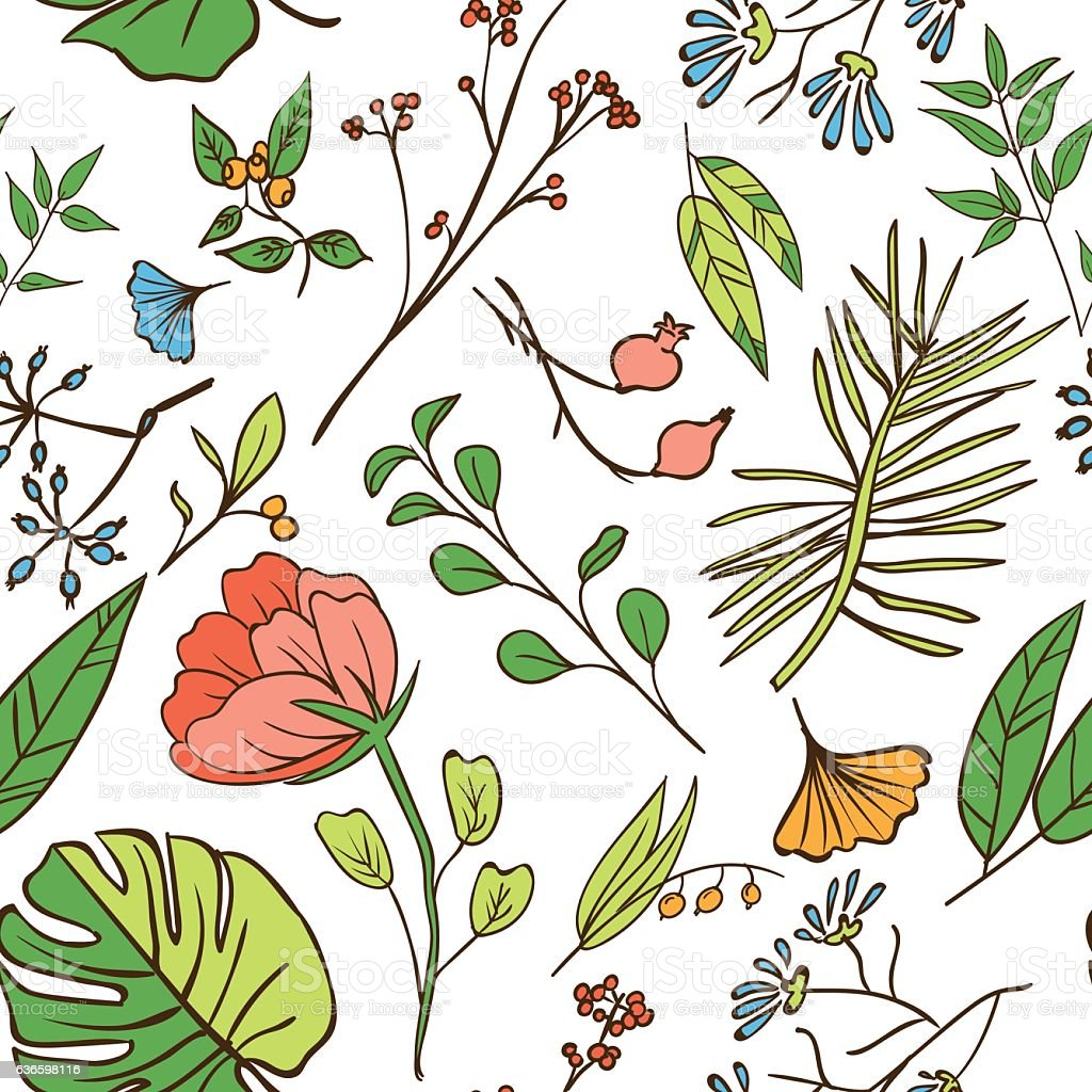 Plants And Herbs Seamless Pattern Stock Illustration - Download