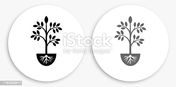 Plants Black and White Round Icon. This 100% royalty free vector illustration is featuring a round button with a drop shadow and the main icon is depicted in black and in grey for a roll-over effect.. This 100% royalty free vector illustration is featuring a round button with a drop shadow and the main icon is depicted in black and in grey for a roll-over effect.