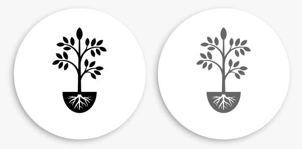 Plants Black and White Round Icon vector art illustration