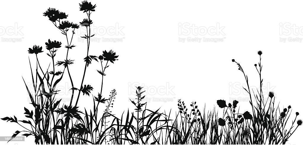 Plants composition one vector art illustration