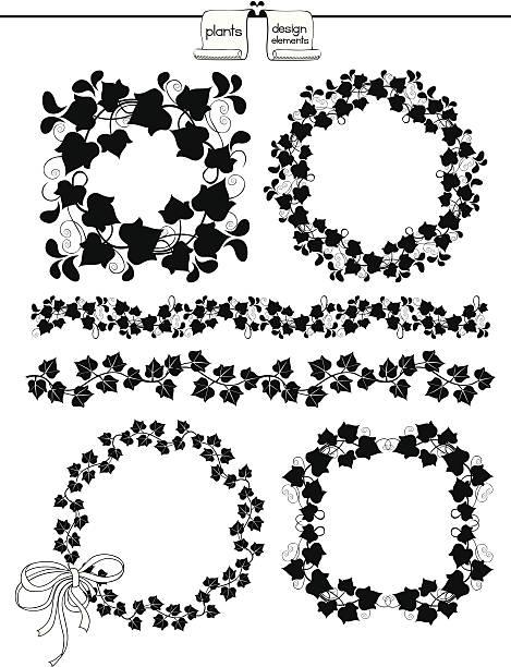 stockillustraties, clipart, cartoons en iconen met plants design elements - klimop