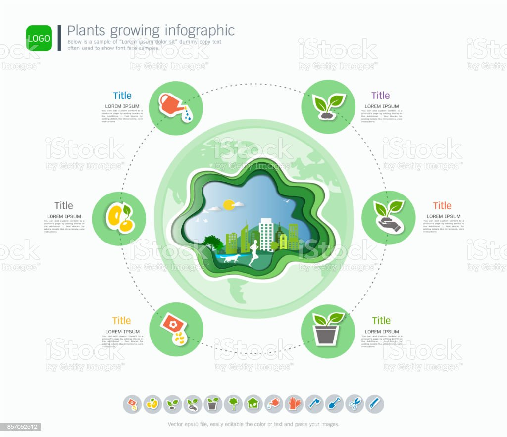 Plants growing timeline infographic with icons set save the world plants growing timeline infographic with icons set save the world and go green concept or maxwellsz