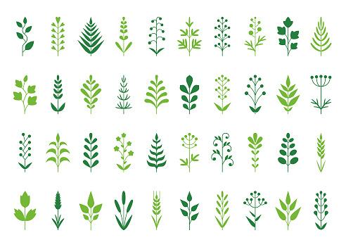 Plants icon set