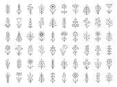 Set of decorative plants. Geometric icon set. Thin line illustration. Vector design elements on white background