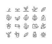 Plants,