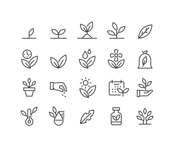Plants Icons - Classic Line Series Plants, plant stock illustrations
