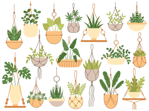 Best Macrame Illustrations Royalty Free Vector Graphics
