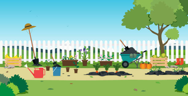 Plants in the garden Garden plants and agricultural equipment with white fence. gardening stock illustrations