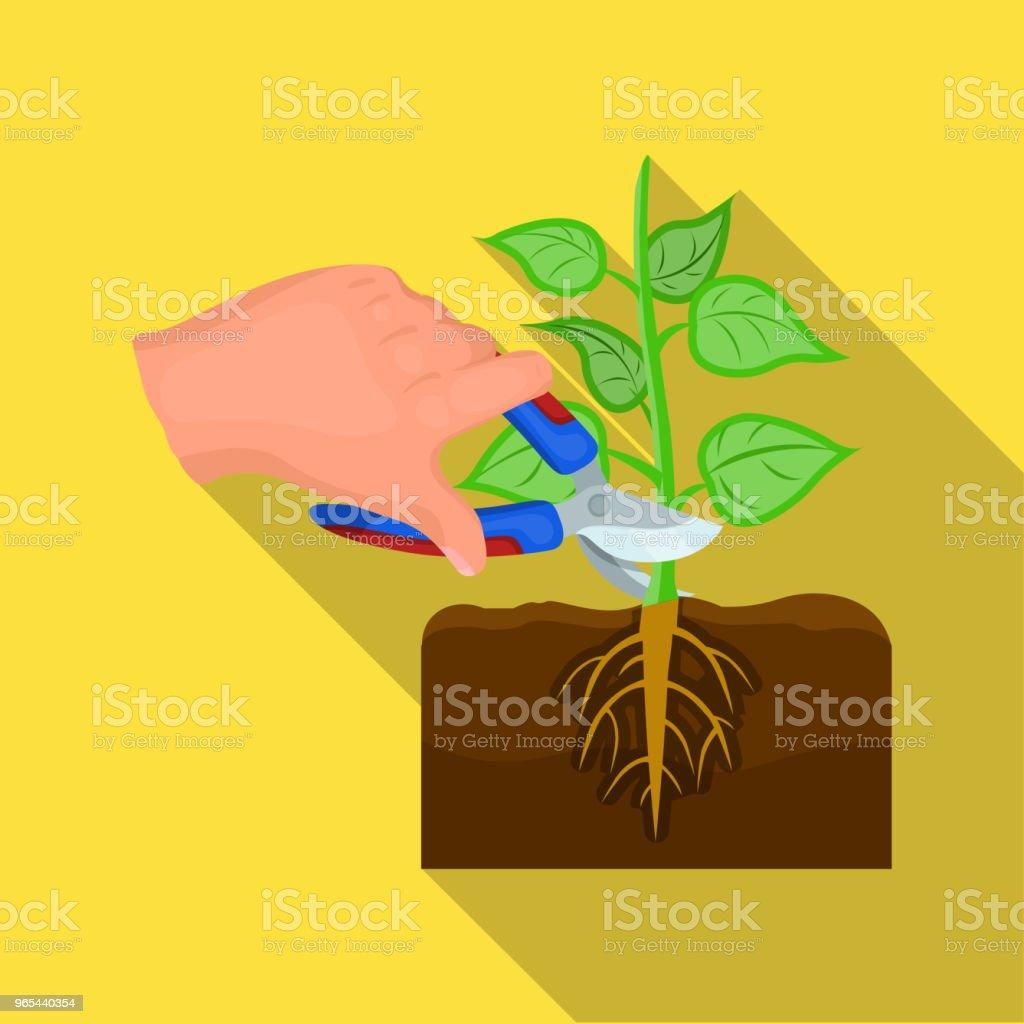 植物, 單一的圖示在平面風格。植物, 向量符號股票插圖網。 - 免版稅園藝圖庫向量圖形