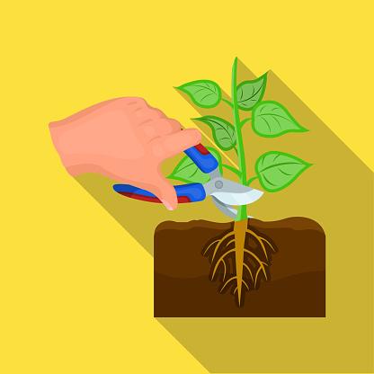 식물 플랫 스타일에 단일 아이콘입니다 식물 벡터 기호 재고 일러스트 웹입니다 가위에 대한 스톡 벡터 아트 및 기타 이미지