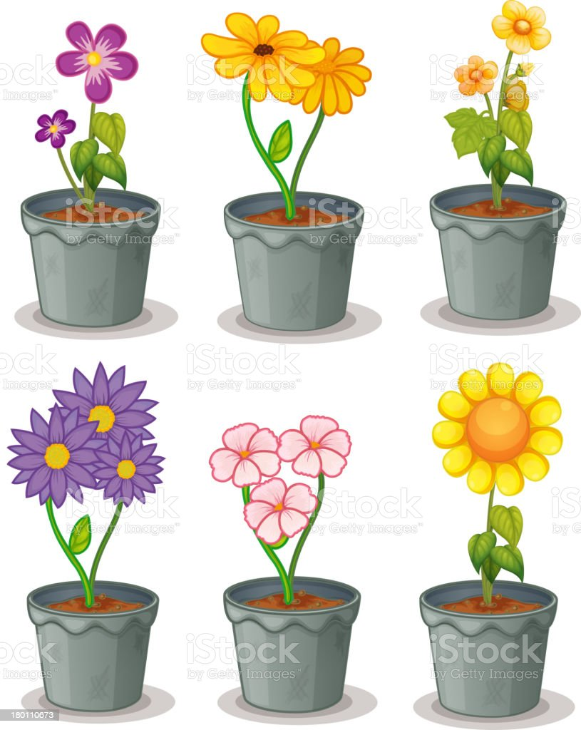 Plants royalty-free stock vector art
