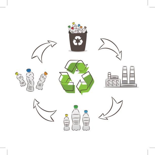 ilustrações de stock, clip art, desenhos animados e ícones de plastic bottle recycling process vector illustration - box separate life