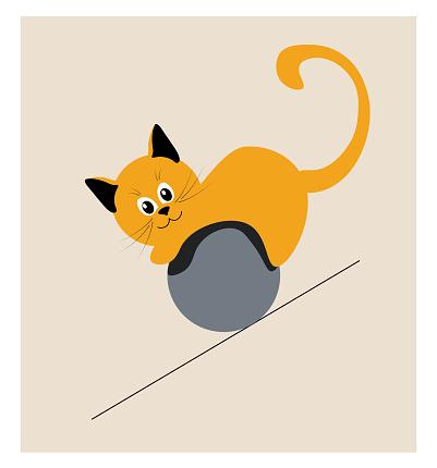 A playful kitten rolls down a ramp in a ball.