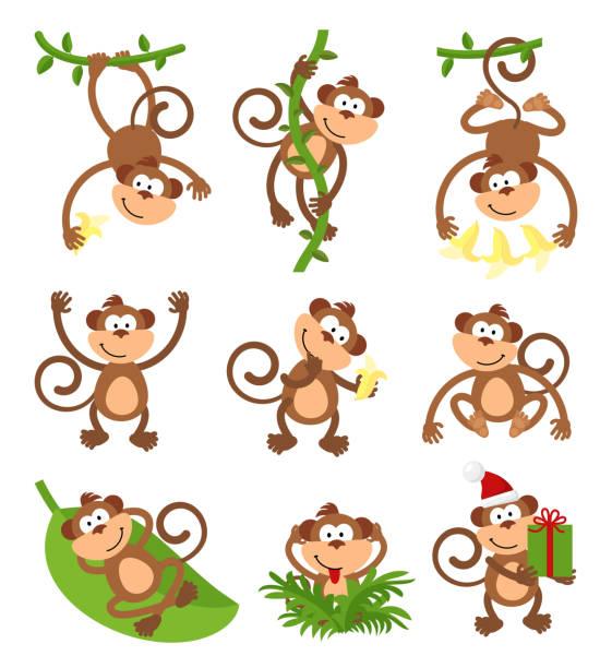 playful monkeys character vector set. chinese zodiac 2016 new year - monkey stock illustrations