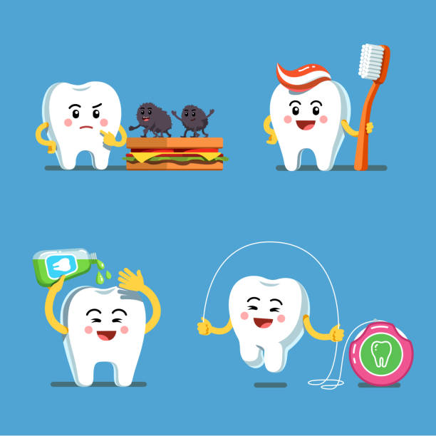 playful teeth characters using mouthwash, dental floss and toothbrush with toothpaste. preventive hygiene measures for tooth health. flat isolated vector - dentist stock illustrations, clip art, cartoons, & icons