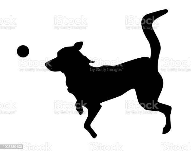 Playing dog silhouette on white background vector id1003380400?b=1&k=6&m=1003380400&s=612x612&h=ryxsyyxqafvxxfcxajrsgoedxf3fa0tknwv5znc sqi=