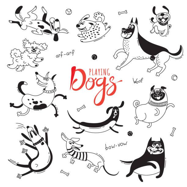 ilustrações de stock, clip art, desenhos animados e ícones de playing dogs. funny lap-dog, happy pug, mongrels and other breeds. set of isolated vector drawings for design - happy dog