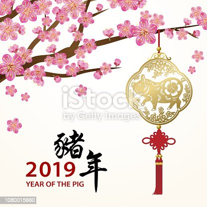 A golden pig pendant hanging on the plum tree to celebrate the Year of the Pig 2019, the Chinese Calligraphy means Year of the Pig