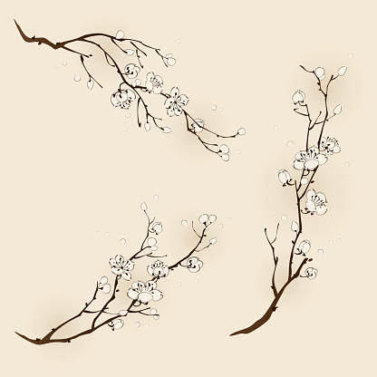 Plum Blossom With Line Design Stock Illustration - Download Image Now