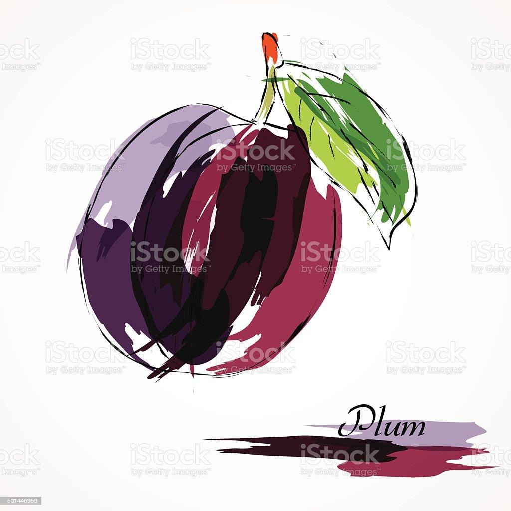 Plum fruit vector art illustration