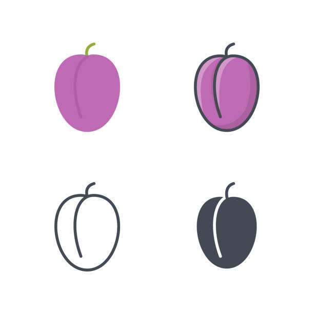 pflaume obst essen symbol vektor farbige flache linie - pflaumenkuchen stock-grafiken, -clipart, -cartoons und -symbole