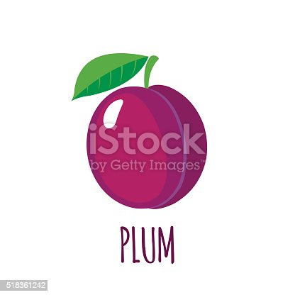istock Plum icon in flat style on white background 518361242
