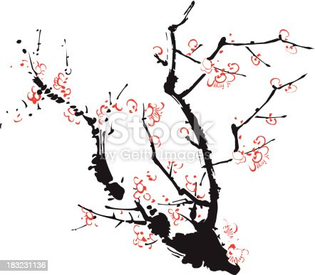 Chinese style Plum (Kyoto) - Illustration.