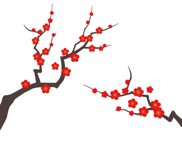 Plum tree background material Plum tree background material plum blossom stock illustrations