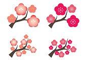 Plum tree four types